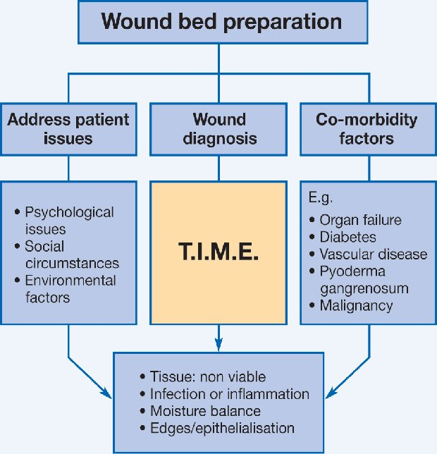 teaching wound management a collaborative model for future education rh worldwidewounds com Wound Care Policy and Procedure wound care guidelines nice
