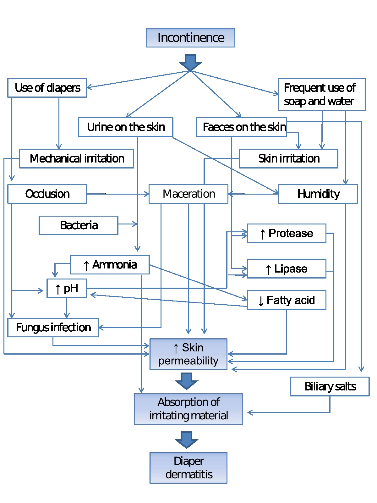 Dermatological Problems And Periwound Skin